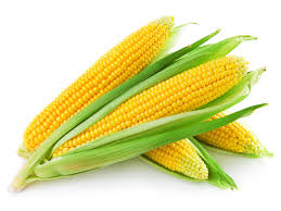 Sweet corn is back; Reminder we sell a range of pantry items