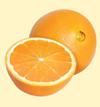 The difference between Navel and Valencia oranges